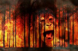 Orangutan-etiqueta